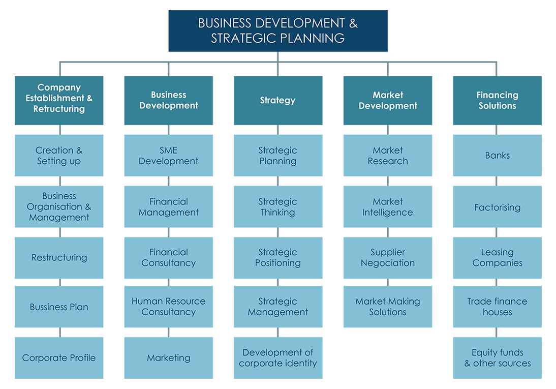 strategic planning business development  strategic