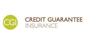 Credit Guarantee Insurance